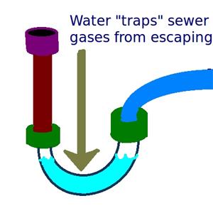 P-Trap explanation