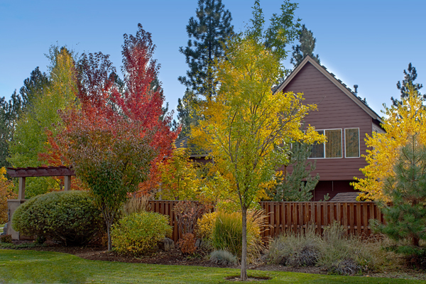 Metro Atlanta home buying markets regularly change — just like the seasons.